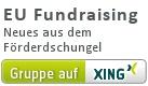 XING-Gruppe EU Fundraising